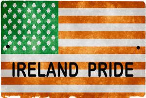 e22412ab51fa IRELAND USA flag Sign 8 x 12 Patriotic Emblem PRIDE Version