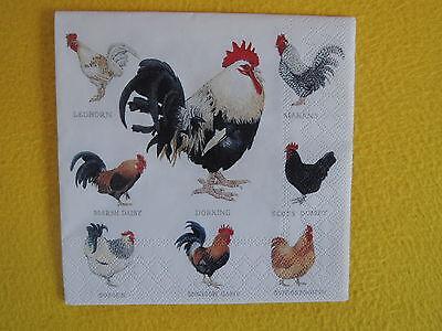 4 stück Servietten Wyandotte Hühnerrasen Hahn Huhn Hühner kleine motive viele