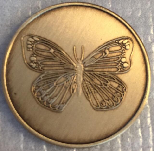 Bulk Lot of 250 Butterfly Serenity Prayer Bronze Medallion Coin Chip
