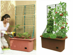 Mobile-Vegetable-Patch-Trellis-Self-Watering-Planter-Tomatoes-Herb-Flower-Garden