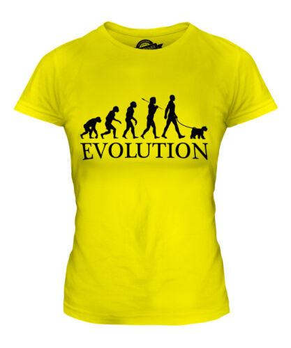 WELSH TERRIER EVOLUTION OF MAN LADIES T-SHIRT TEE TOP DOG LOVER GIFT WALKER