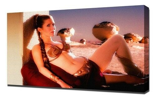 "CarrieFisher-PrincessLeiaOrganaStarWarUSAhotstar40/""x24/""Poster  032"