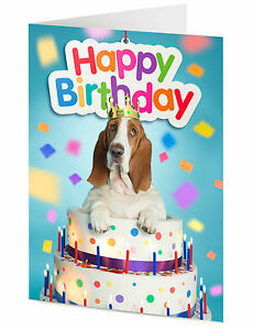 Basset hound dog emerges from birthday cake happy birthday card image is loading basset hound dog emerges from birthday cake 039 bookmarktalkfo Gallery