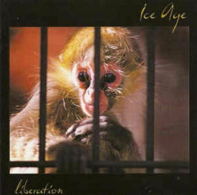 ICE AGE liberation (CD, album, 2001) prog rock, magna carta, very good condition
