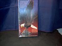 Model Kit American Bald Eagle
