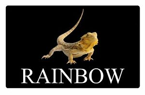 Details about Personalised Bearded Dragon Lizard Name Metal Aluminium  Vivarium Sign Plaque Bla