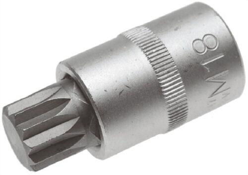 1//2 BGS Bit Einsatz Innenvielzahn M18 x 55 mm 12,5 4347
