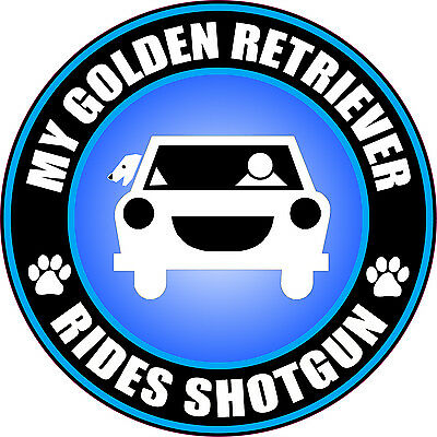 MY GOLDEN RETRIEVER RIDES SHOTGUN Sticker Decal