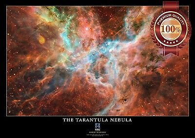 NEW N2 BLUE BUTTERFLY NEBULA HUBBLE SPACE PHOTO HOME ART PRINT PREMIUM POSTER