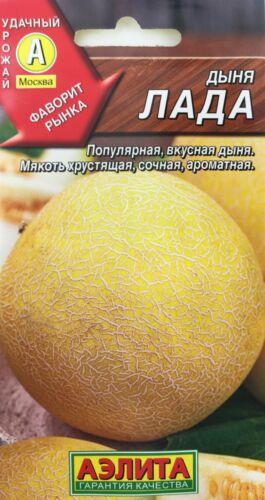 Non GMO Melon Seeds from Russia LADA