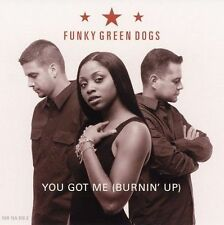 FUNKY GREEN DOGS - YOU GOT ME (BURNIN' UP) - 4 TRACK MUSIC CD - BRAND NEW - G086
