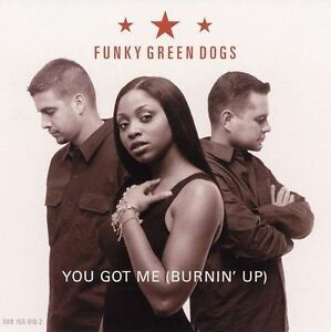 brand-new-factory-sealed-YOU-GOT-ME-BURNIN-UP-Funky-Green-Dogs-CD-2002-MCA