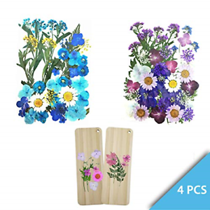 APOL Set of 4 Packets Real Pressed Flowers Includes 2 DIY Flowers 4336883959