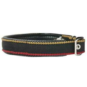 Rambo-Dog-Collar-Whitney-Gold