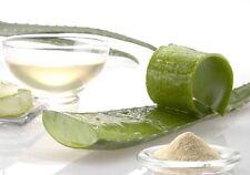 ALOE VERA Polvere Naturale + SENNA 100 g Lassativo Intestino Regolare Digestione