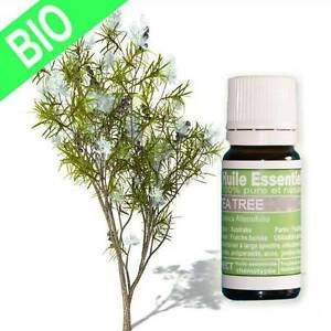 Huile essentielle Tea Tree Bio Certifiée 10 ml