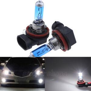 2pcs 12V 55W 6000K White H11 Low Beam Xenon Halogen Headlight Bulbs