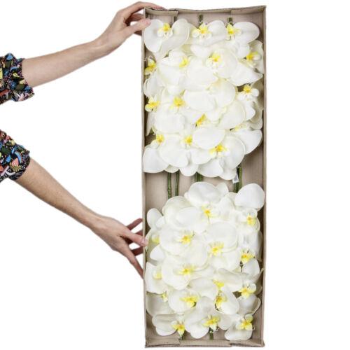 Orchideenzweige 6 Stück Creme /& Gelb 73 cm lang Kunstblumen künstliche Orchidee