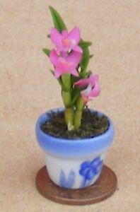 Échelle 1:12 Rose Orchidée Dans Un Pot Tumdee Maison De Poupées Miniature Jardin Fleur 59-afficher Le Titre D'origine Sans Retour