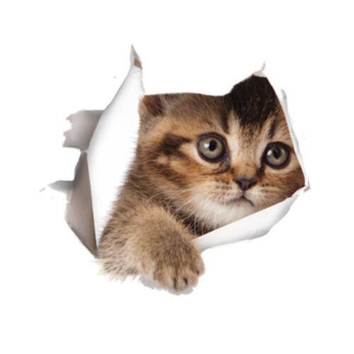 3D Aufkleber niedliche Katze  10 verschiedene Varianten !
