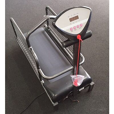 Motorized Dog Treadmill / Walking Machine Wire Mesh Sides 800x280mm walking area