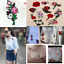 11pcs-Set-Embroidered-Rose-Flower-Iron-on-Sew-Bag-Hat-Dress-Patch-Badge-Applique thumbnail 3