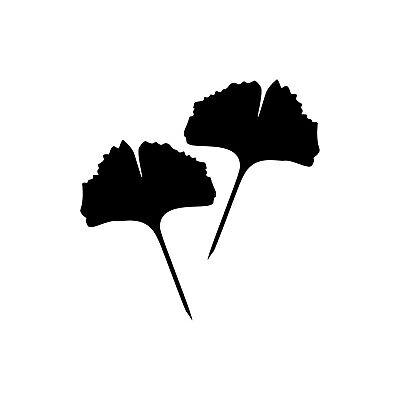1 Paia 2 Fogli 15cm Nero Pieno Ginkgo Foglio Adesivo Tatuaggio Ginko Gingko-mostra Il Titolo Originale Attivando La Circolazione Sanguigna E Rafforzando I Tendini E Le Ossa