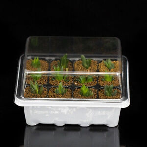 3x-set-12-Cell-Seed-Starter-Kit-Starting-Plant-Propagation-Tray-Dome-Gardenin