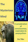 The Mysterious Mind: A Consideration of Consciousness, Materialism & Panpsychism by Eric Tiller (Paperback, 2011)
