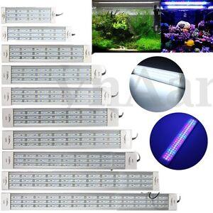 5730-LAMPADA-ILLUMINAZIONE-LUCE-PLAFONIERA-CLIP-PER-DA-ACQUARIO-FISH-TANK-LED