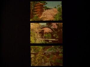 Lot-of-3-Vintage-Japanese-Tea-Garden-San-Francisco-Califorina-Postcards
