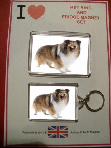 Collie Fridge Magnet /& Key Ring Set