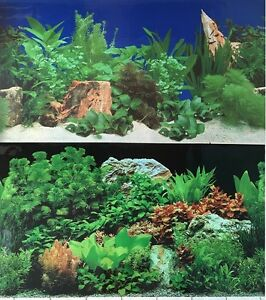 Aquarium background decoration 2 sided plants and rocks for Aquarium background decoration