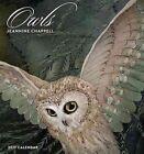 Owls 2017 Wall Calendar Chappell Jeannine Book