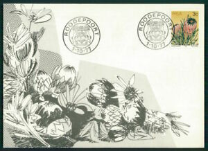 MotivéE Rsa Mk 1977 Flore Plantes Maximum Carte Carte Maximum Card Mc Cm Ec80-afficher Le Titre D'origine