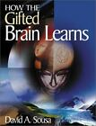 1-Off: How the Gifted Brain Learns by David A. Sousa (2002, Paperback)