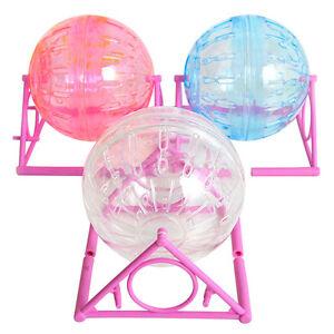 Hamster Ball: Pet Supplies | eBay