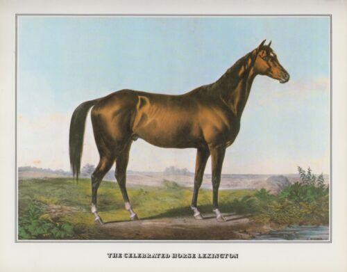 """1978 Vintage /""""LEXINGTON/"""" HORSE RACING CHAMPION CURRIER /& IVES COLOR Lithograph"""