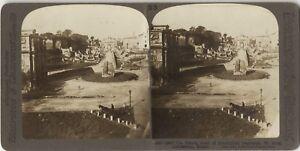 Roma-Via-Saora-Colosseo-Italia-Foto-Stereo-Stereoview-Vintage