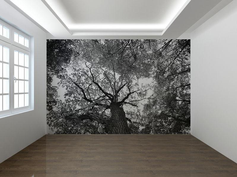 Frühling Baum Blätter Schwarz und Weiß Foto Wandtapete Wandgemälde (5270055)
