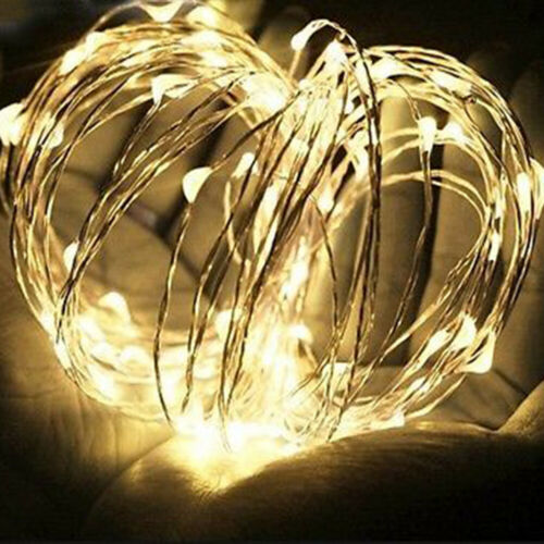 2//5//10m LED Silver Wire Fairy Starry String Lights 12V//1A Indoor//Outdoor US Plug