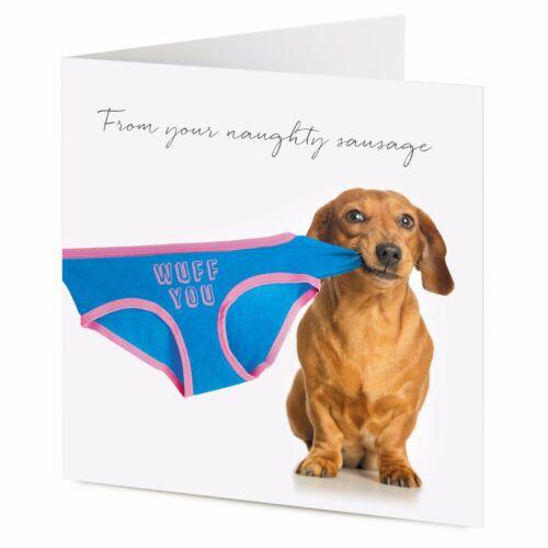 tarjeta de San Valentín Desde su Naughty Salchicha Dachshund Perro tirones Ropa Interior Cumpleaños