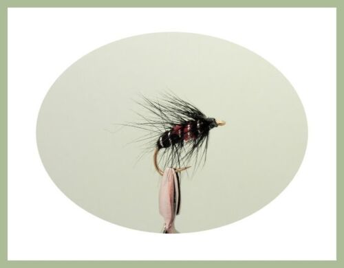 36 Box Suitable for Irish Rivers River Trout Flies named Fly Fishing NBX78