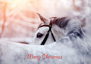 Christmas-Cards-Equestrian-Horse-Pony-Unique-Cards-10-Pack-A5-Size-CC809