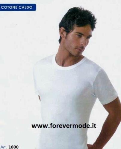 3 T-Shirt uomo Trevi manica corta a girocollo in caldo cotone felpato art 1800