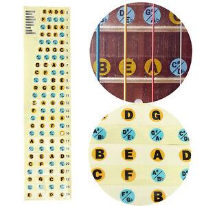 Bass-Guitar-Neck-Scale-Map-Fretboard-Note-Labels-Fret-Sticker-2017-Fingerboard