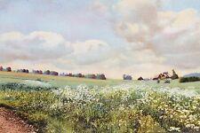 18938 Photochromie AK Landschaft bei Neuhausen im Erzgebirge Häuser um 1920