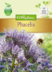 phacelia tanacetifolia saatgut gr nd ngung bienenweide. Black Bedroom Furniture Sets. Home Design Ideas