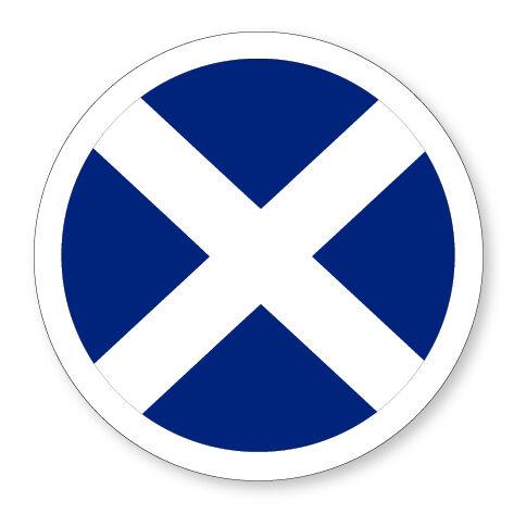 SALTIRE FLAG UK STATIC CLING CAR SCOTTISH VAN VEHICLE TAX DISC HOLDER