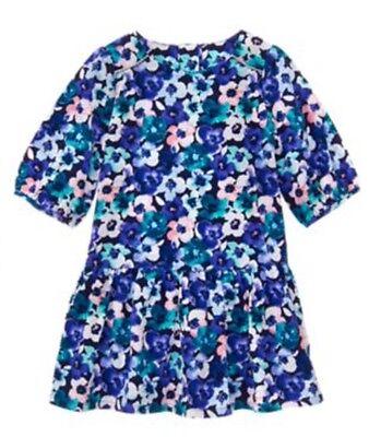 NWT GYMBOREE Toddler Girls Size 5T Pink /& Blue Floral DRESS MSRP $39